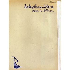 BABYSHAMBLES - DOWN IN ALBION GUITAR TAB.