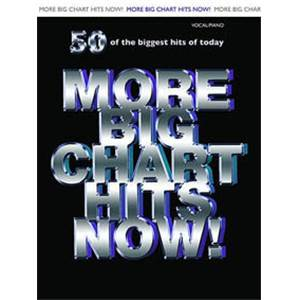 COMPILATION - MORE BIG CHART HITS NOW! P/V/G