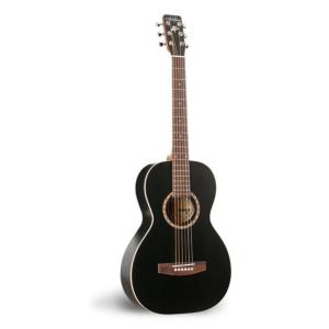 GUITARE FOLK ACOUSTIQUE  ART & LUTHERIE AMII CEDAR BLACK 23561
