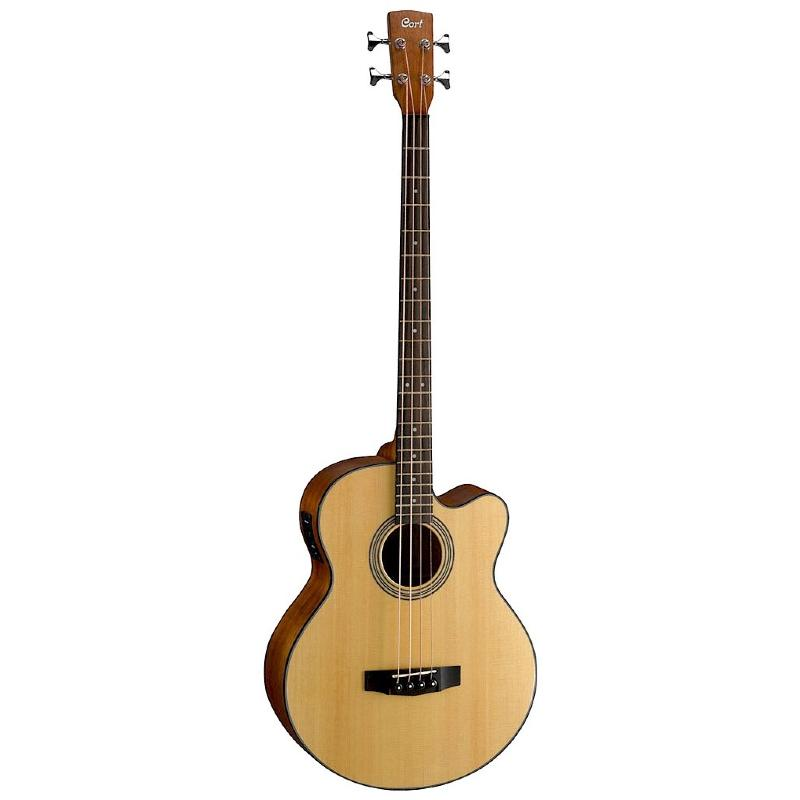 guitare acoustique 4 cordes
