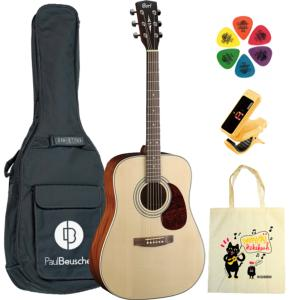 PACK GUITARE FOLK LOLA DUBINI