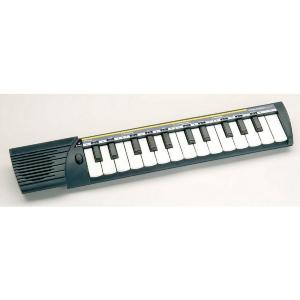 MINI CLAVIER  GUIDE CHANT BONTEMPI C25 CONCERTINO
