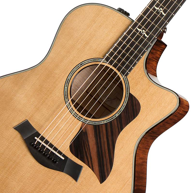 guitare folk electro acoustique taylor 616 ce paul. Black Bedroom Furniture Sets. Home Design Ideas