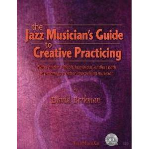 BERKMAN DAVID - JAZZ MUSICIAN'S GUIDE + CD