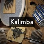 C'est quoi une Kalimba et comment la choisir ?